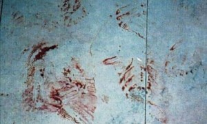 Footwear marks in blood at a crime scene